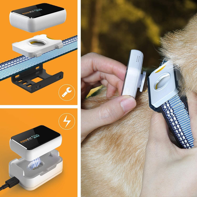 Bild zu Haustiere, gadgets, nützliche produkte, tracker, halsband, futternapf, pfotenreiniger, smart