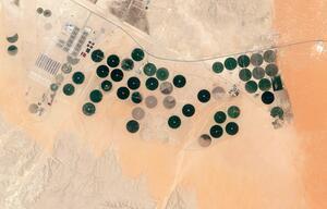 Landwirtschaftliche Betrieb bei Riad