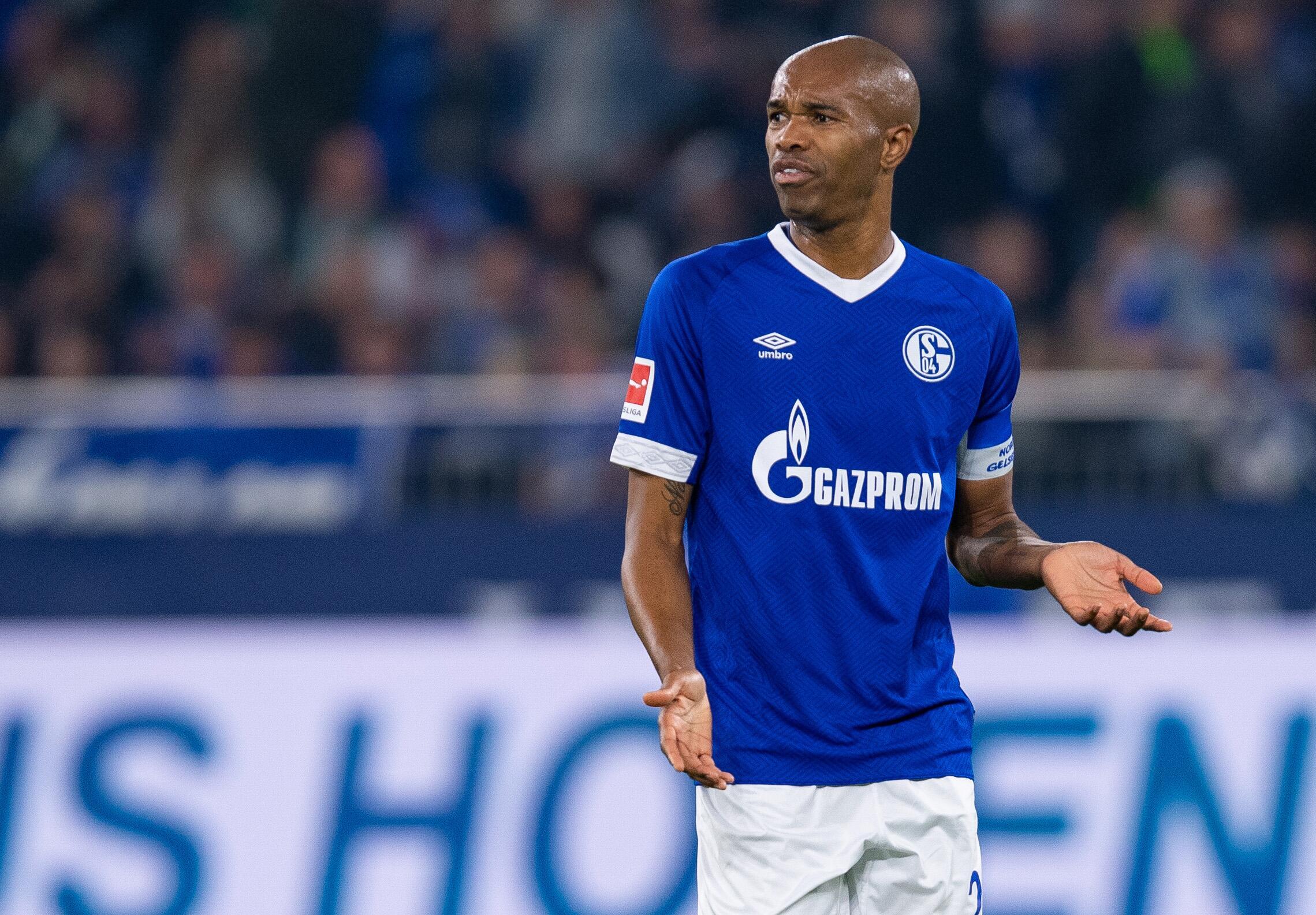 Bild zu Schalke, Naldo, Bundesliga, Wechsel, Monaco, Fußball