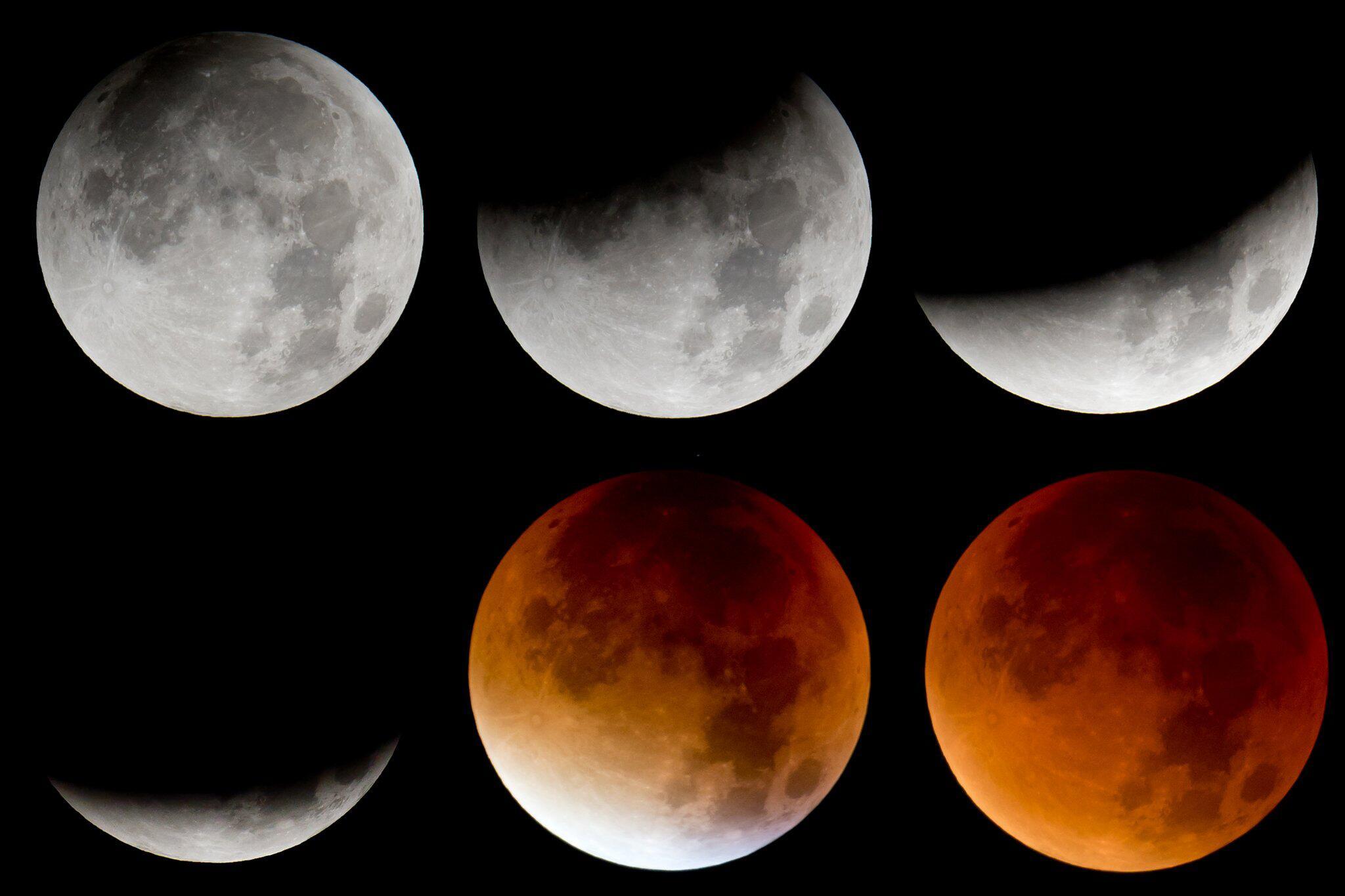 Bild zu Totale Mondfinsternis