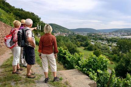 Auf dem Fränkischen Rotwein Wanderweg