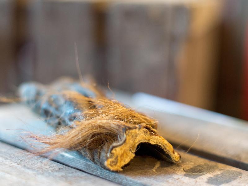 Bild zu Getrocknete Rinderkopfhaut