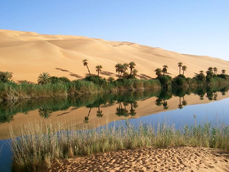 Bild zu Oase, Libyen