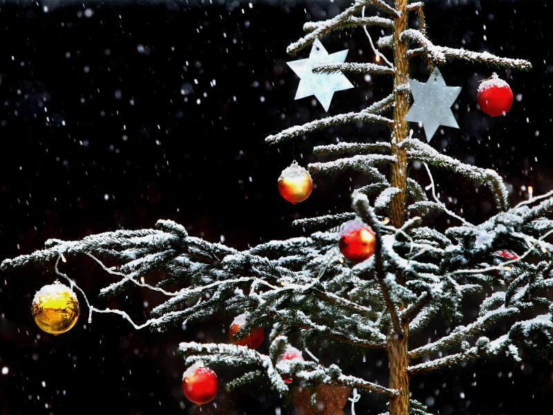 Bild zu Geschmückter Christbaum im Schnee