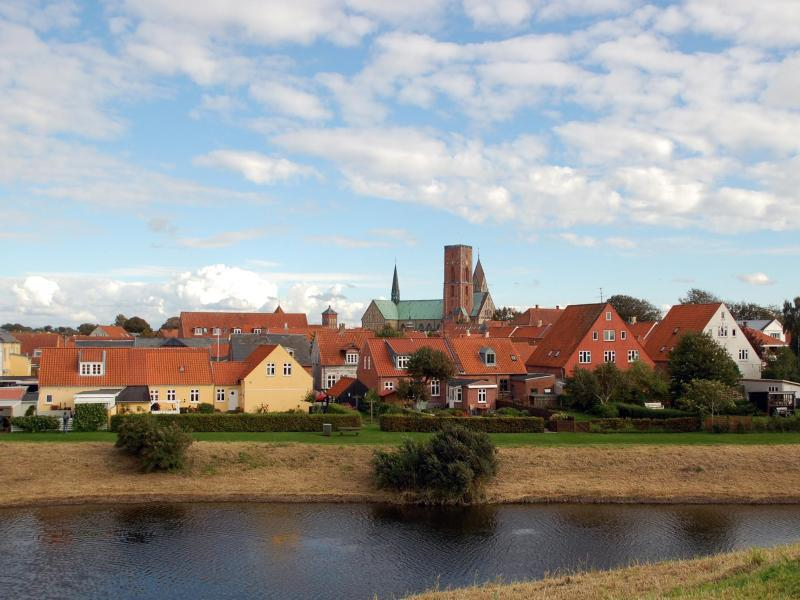 Bild zu Ribe in Dänemark