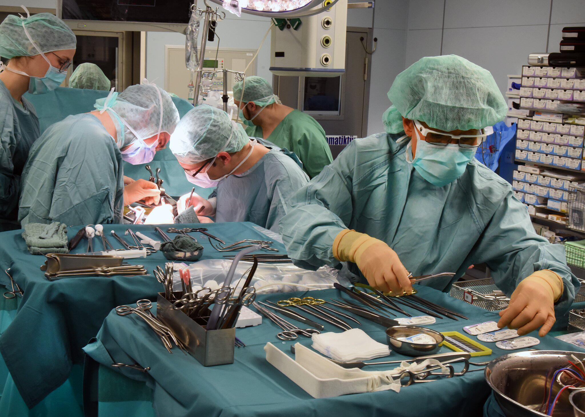 Bild zu Transplantationszentrum am Uniklinikum Leipzig