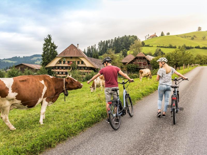 Bild zu Mit dem Fahrrad in die Berge