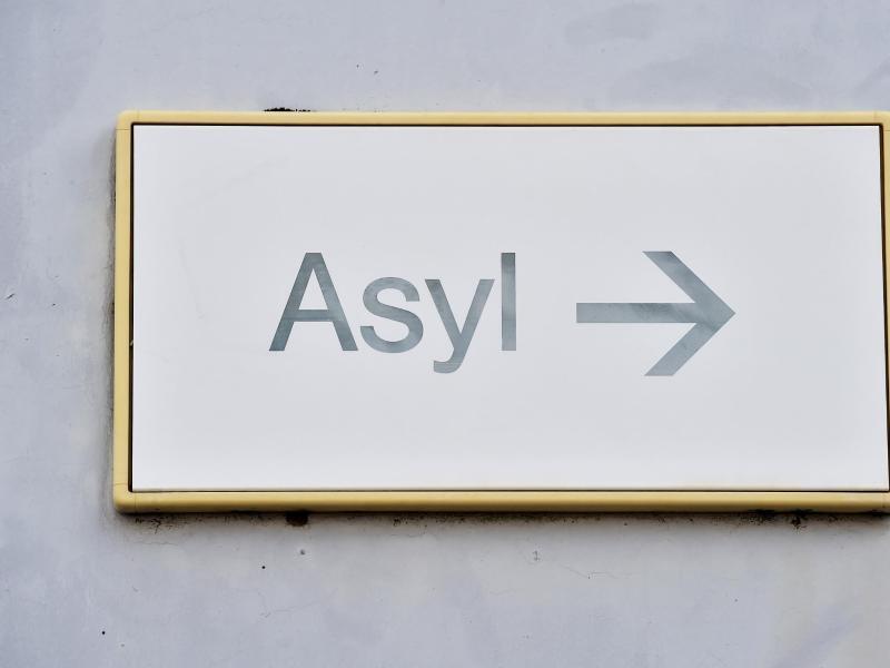 Bild zu Asyl