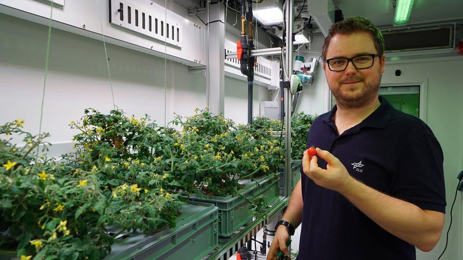 Gemüse aus Antarktis-Gewächshaus bald auch im All?