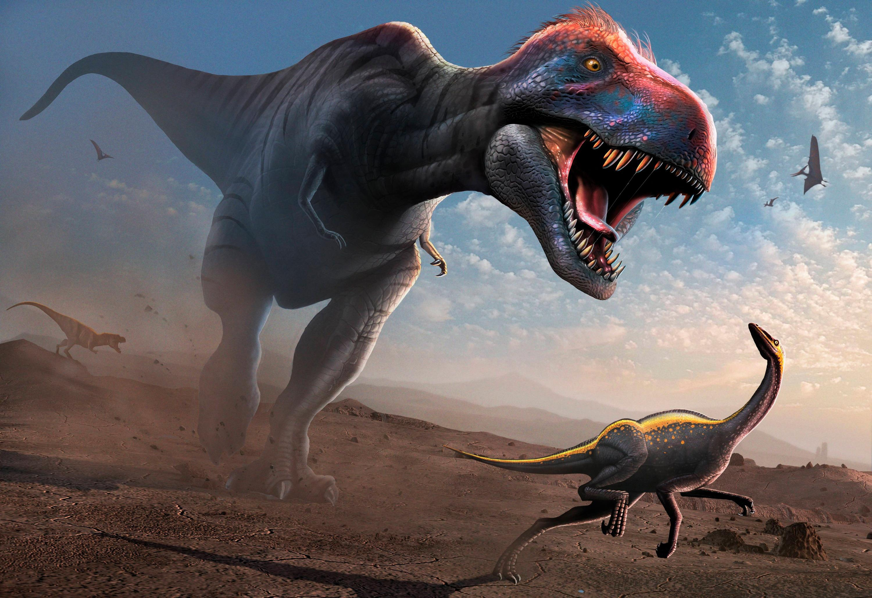 Bild zu Tyrannosaurs rex