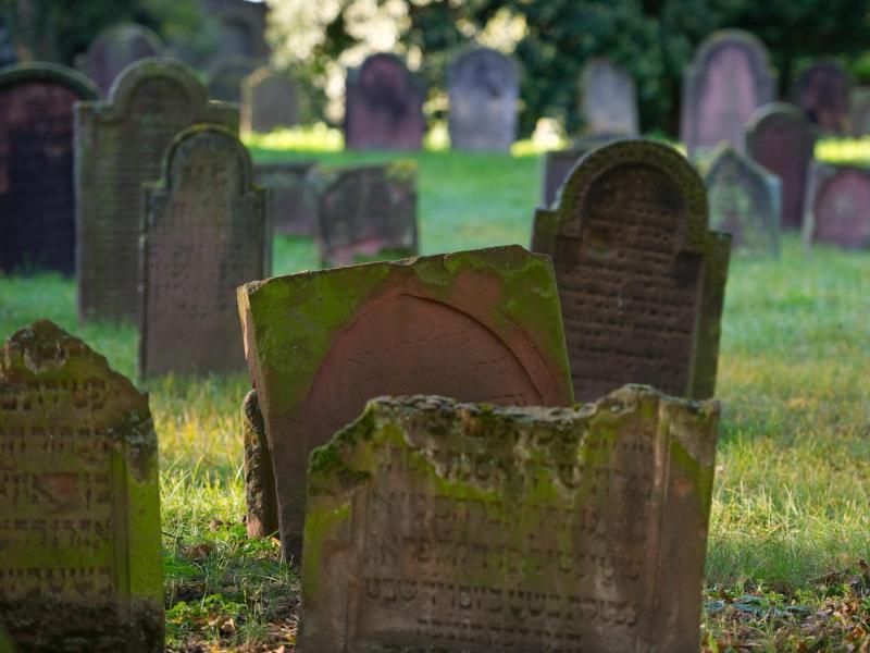 Bild zu Jüdischer Friedhof Worms