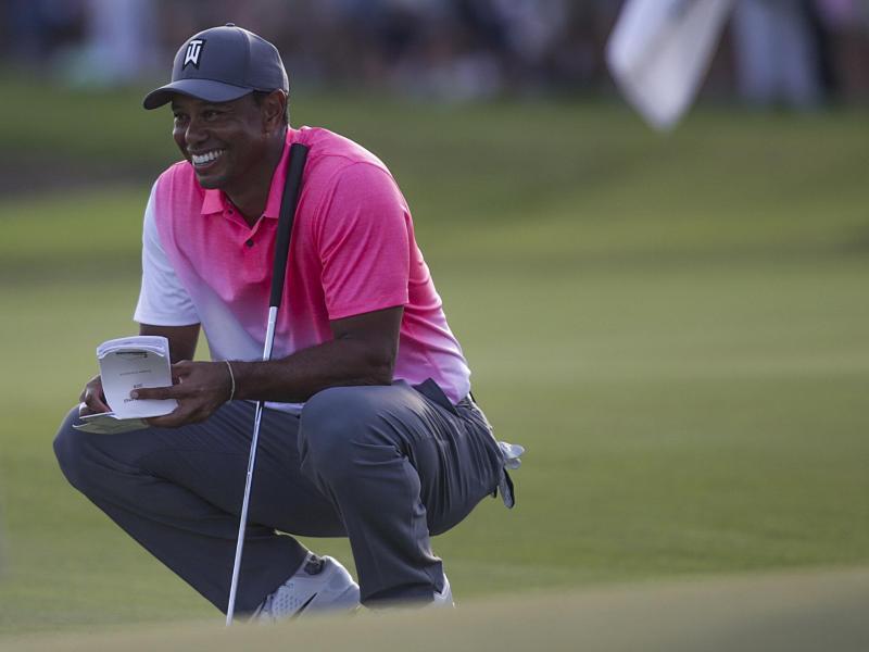 Bild zu Tiger Woods