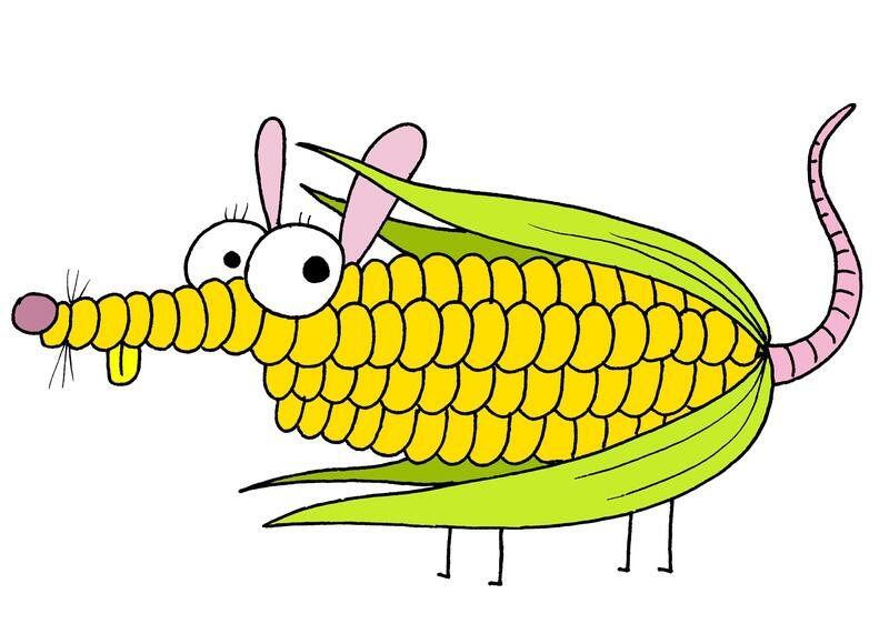 Bild zu Die Mais