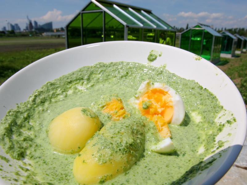 Bild zu Grüne Soße