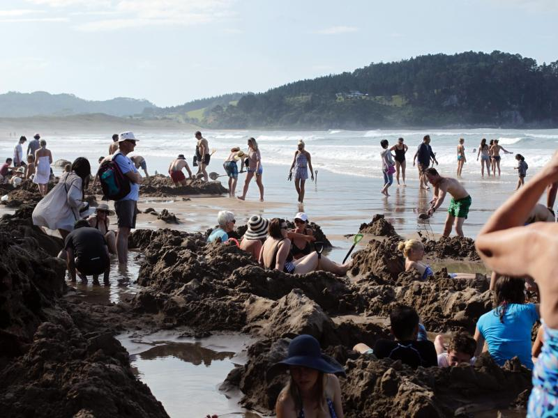 Bild zu Neuseeland wird voller