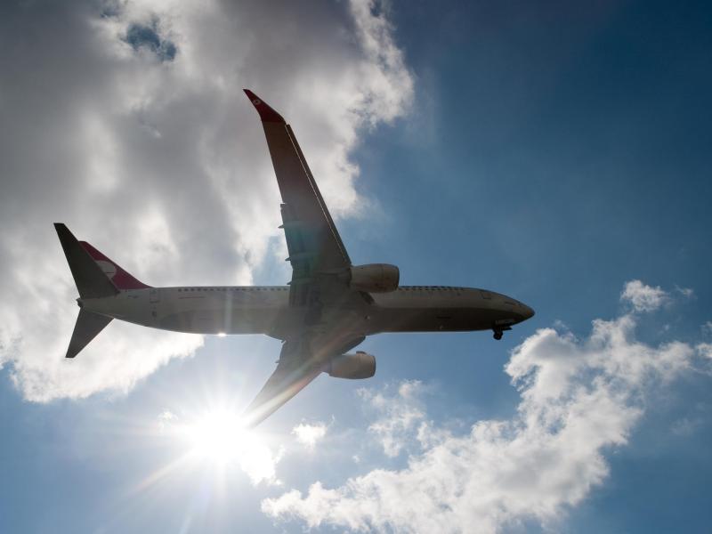 Bild zu Flugreise