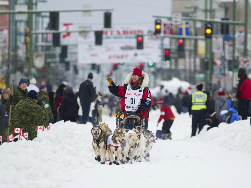 Bild zu Iditarod-Hundeschlittenrennen