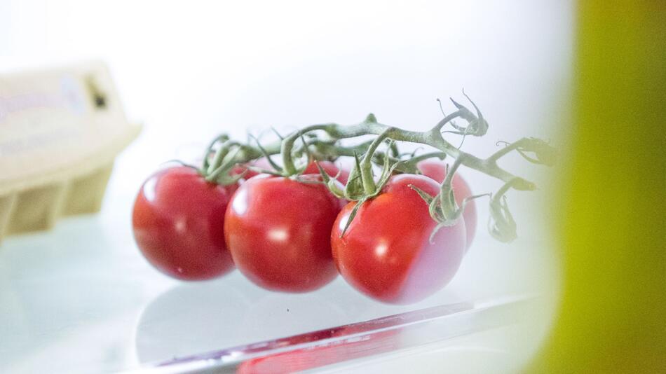 Kühlschrank oder Raumtemperatur? Die Lagerung ist Tomaten egal
