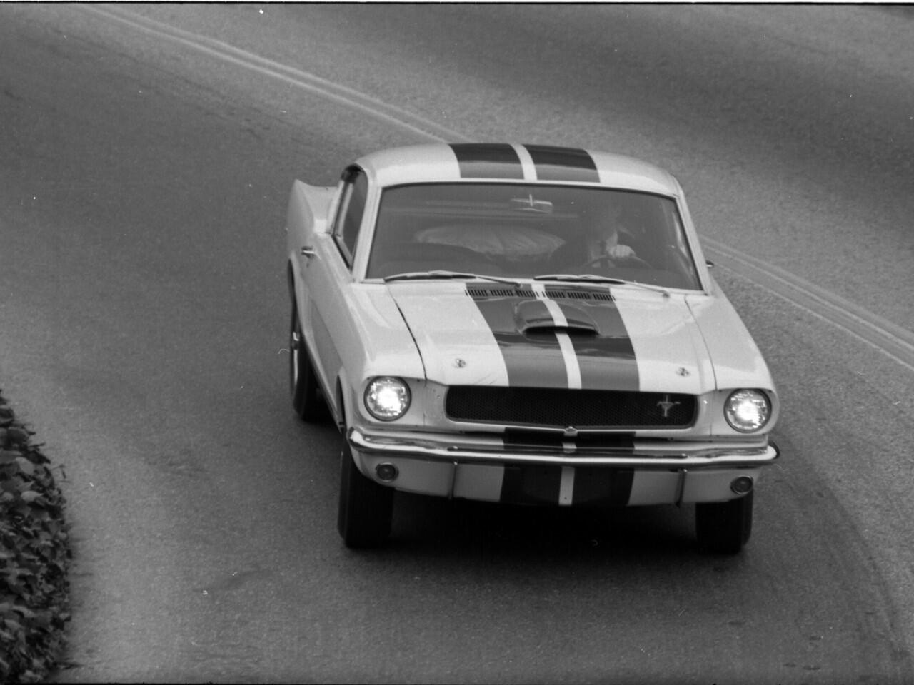Bild zu 1965er Shelby GT350 Mustang Prototyp