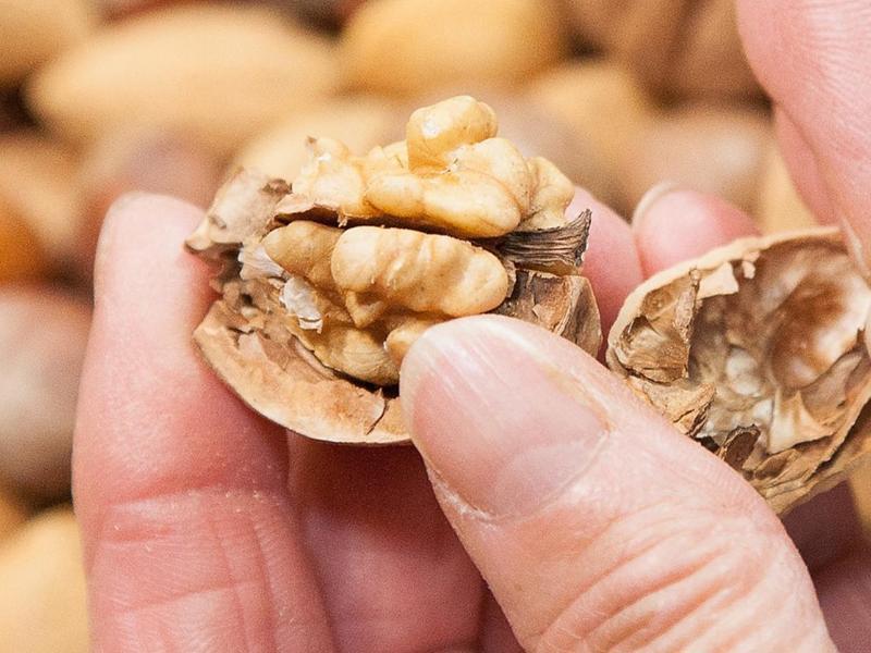 Bild zu Frische Nüsse