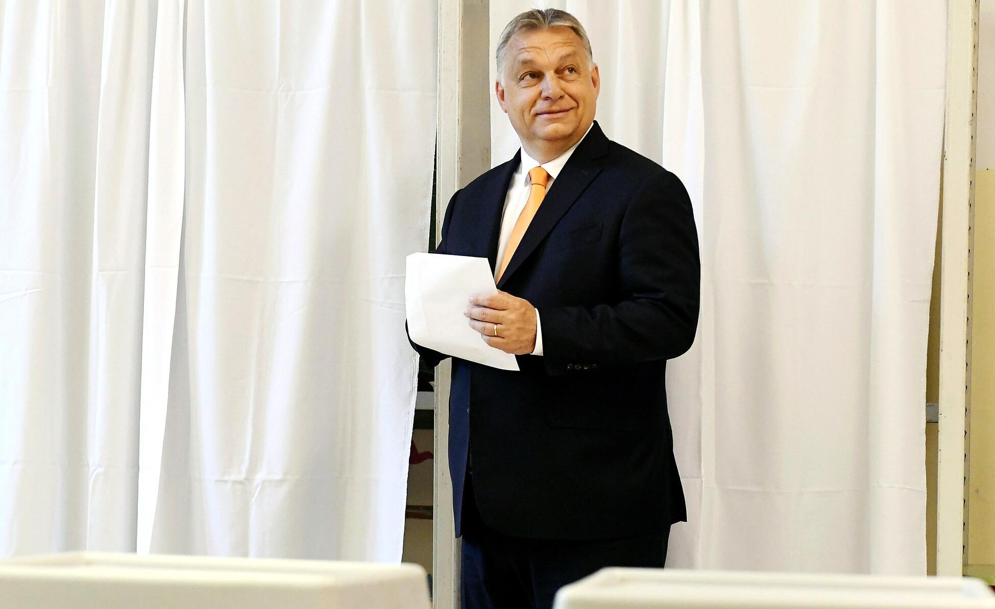 Bild zu Europawahl - Ungarn