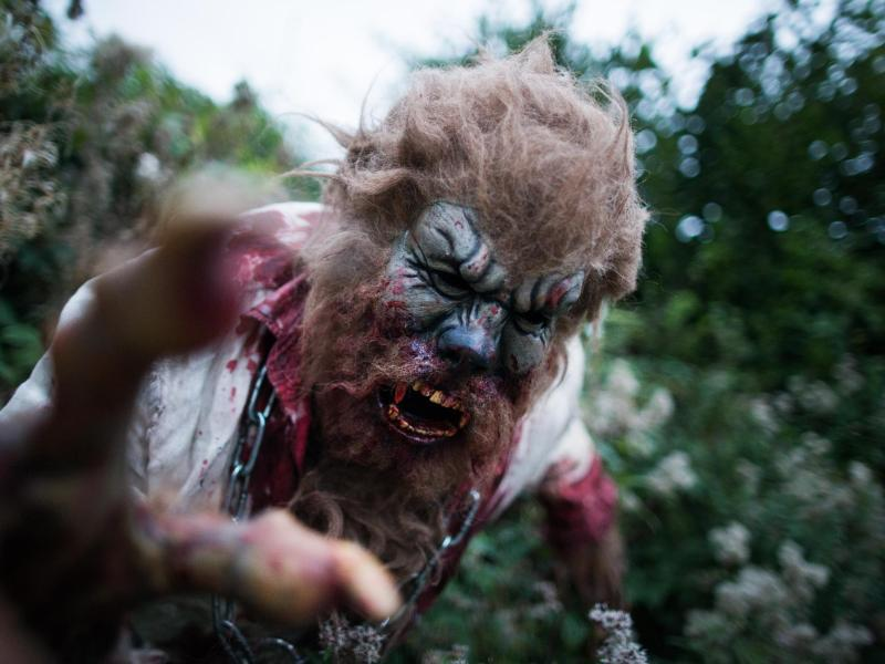 Bild zu «Wolfman» von den Frightguys