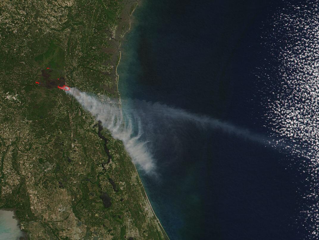 Bild zu Feuer in Florida
