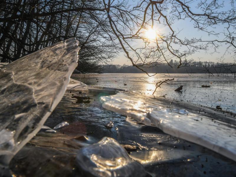 Bild zu Winter