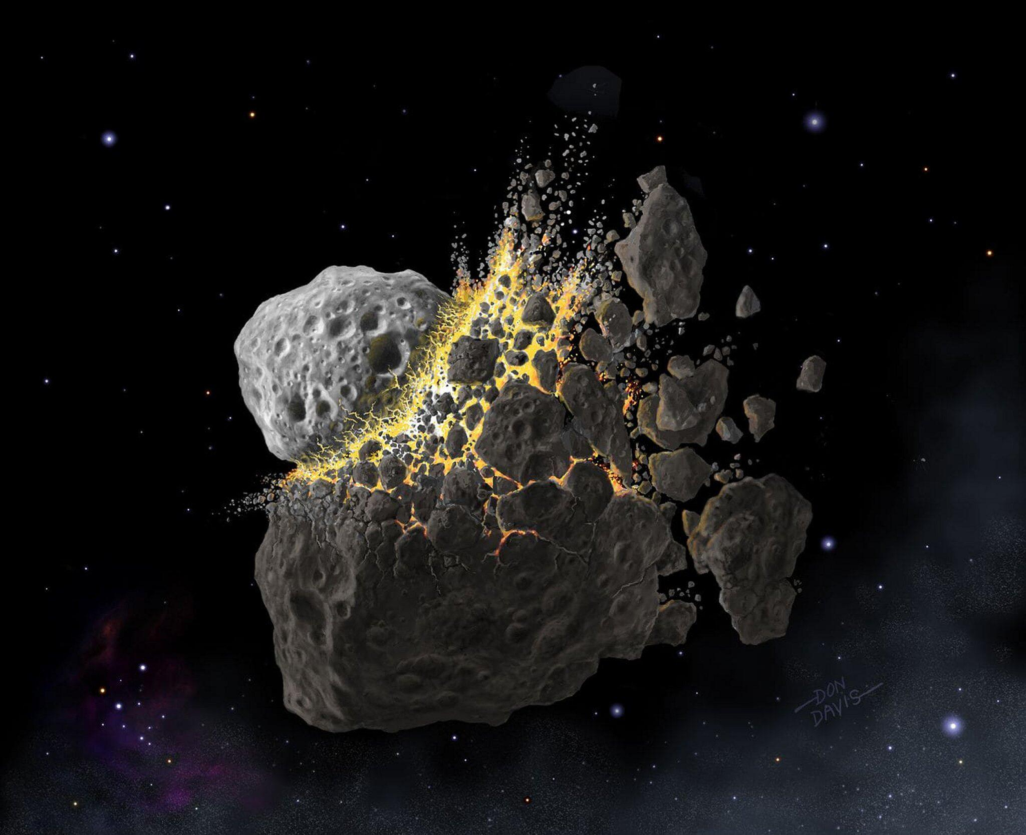 Bild zu Asteroiden-Crash steigerte Artenvielfalt