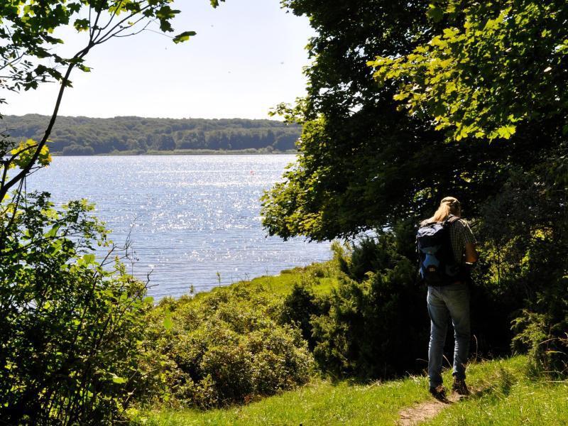 Bild zu Neuer Fjord-Wanderweg
