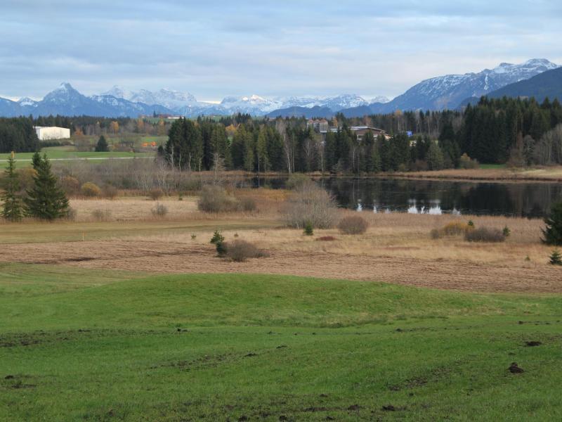 Bild zu Moorlandschaft am Nordrand der Alpen