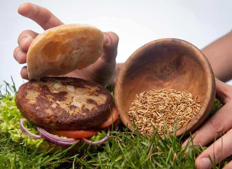 Bild zu «Buxburger»