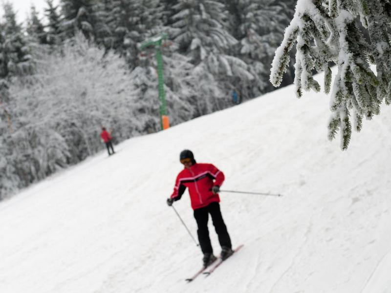 Bild zu Schnee in Sachsen