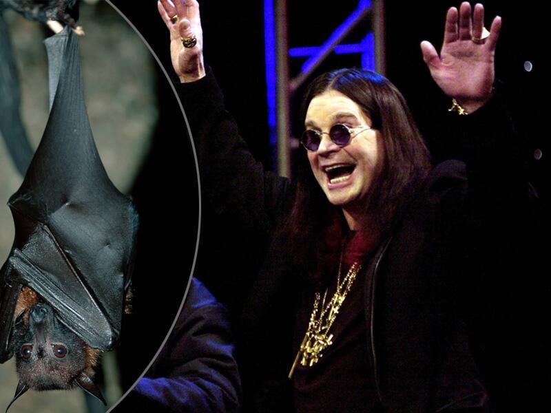 Bild zu Ozzy Osbourne beißt Fledermaus den Kopf ab
