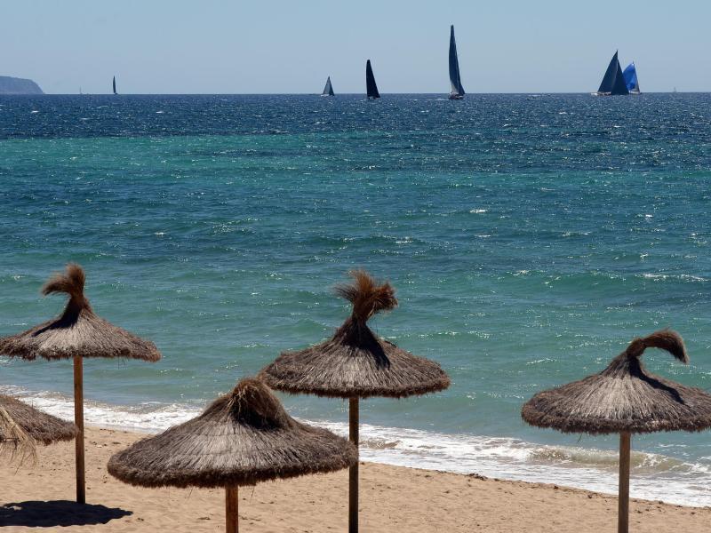 Bild zu Strand auf der Insel Mallorca