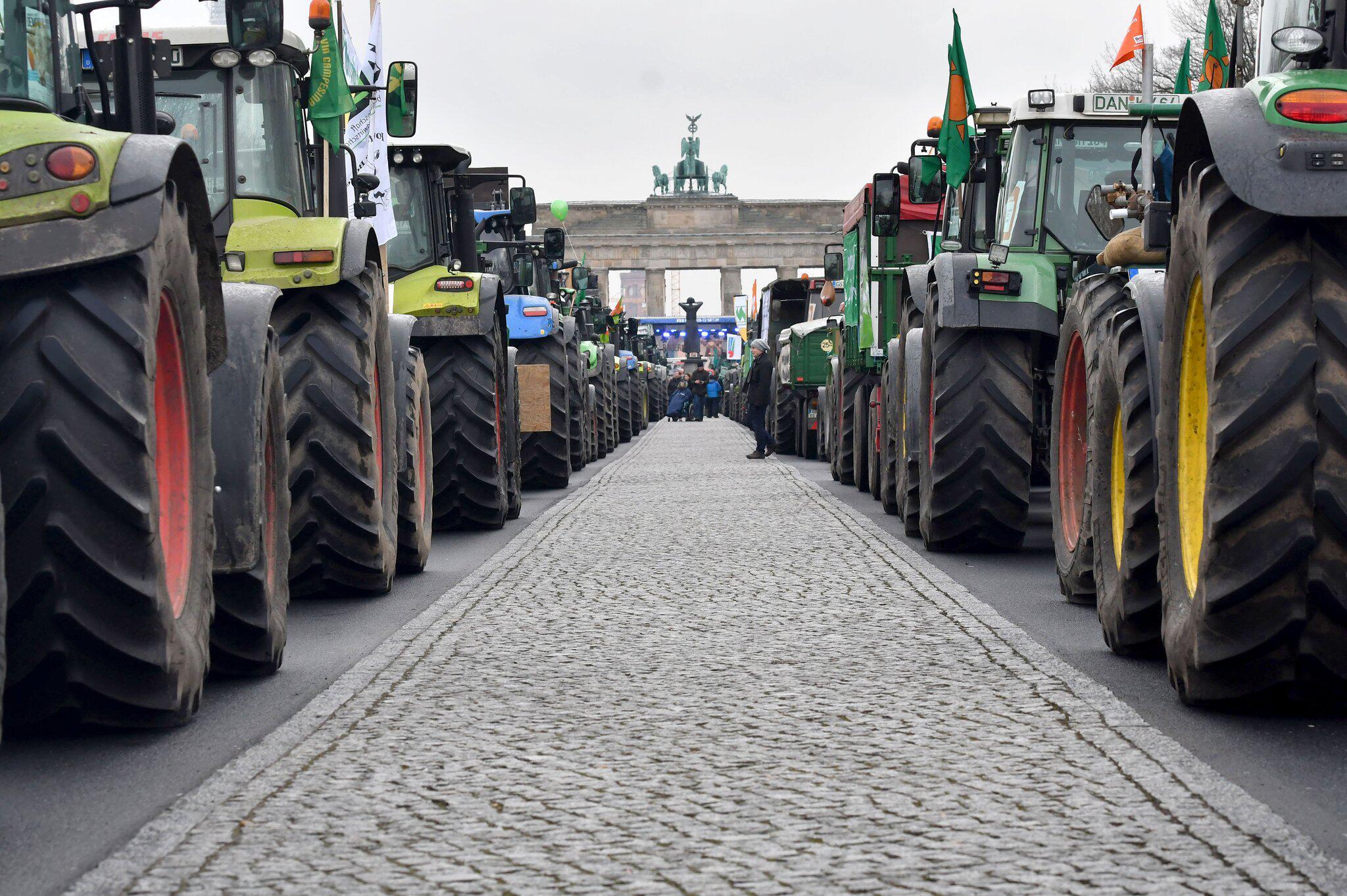 Bild zu Internationale Grüne Woche - Demonstration für Agrarwende
