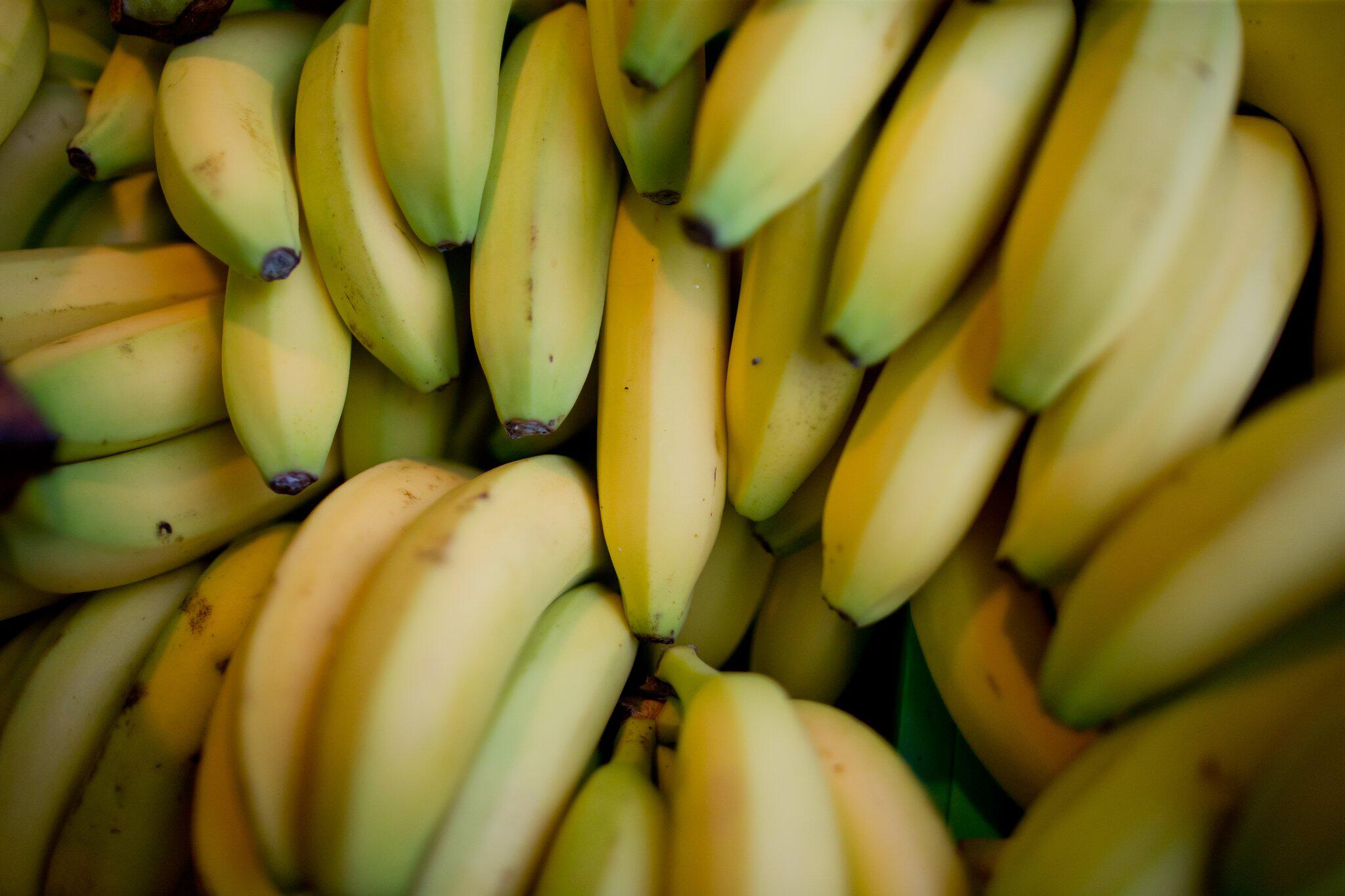 Bild zu Bananen