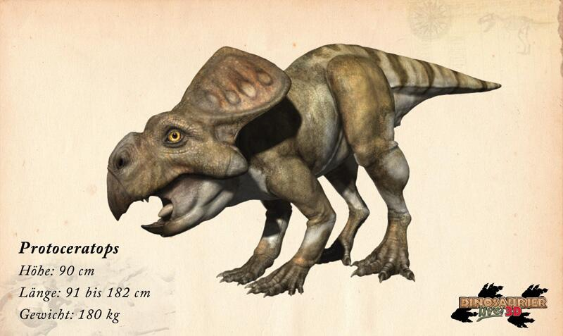 Bild zu Dinosaurier: Protoceratops
