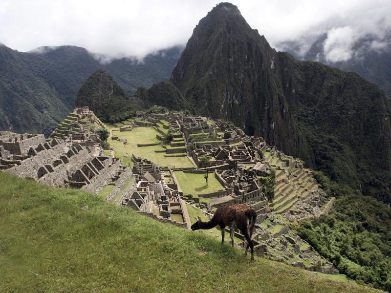 Bild zu Machu Picchu