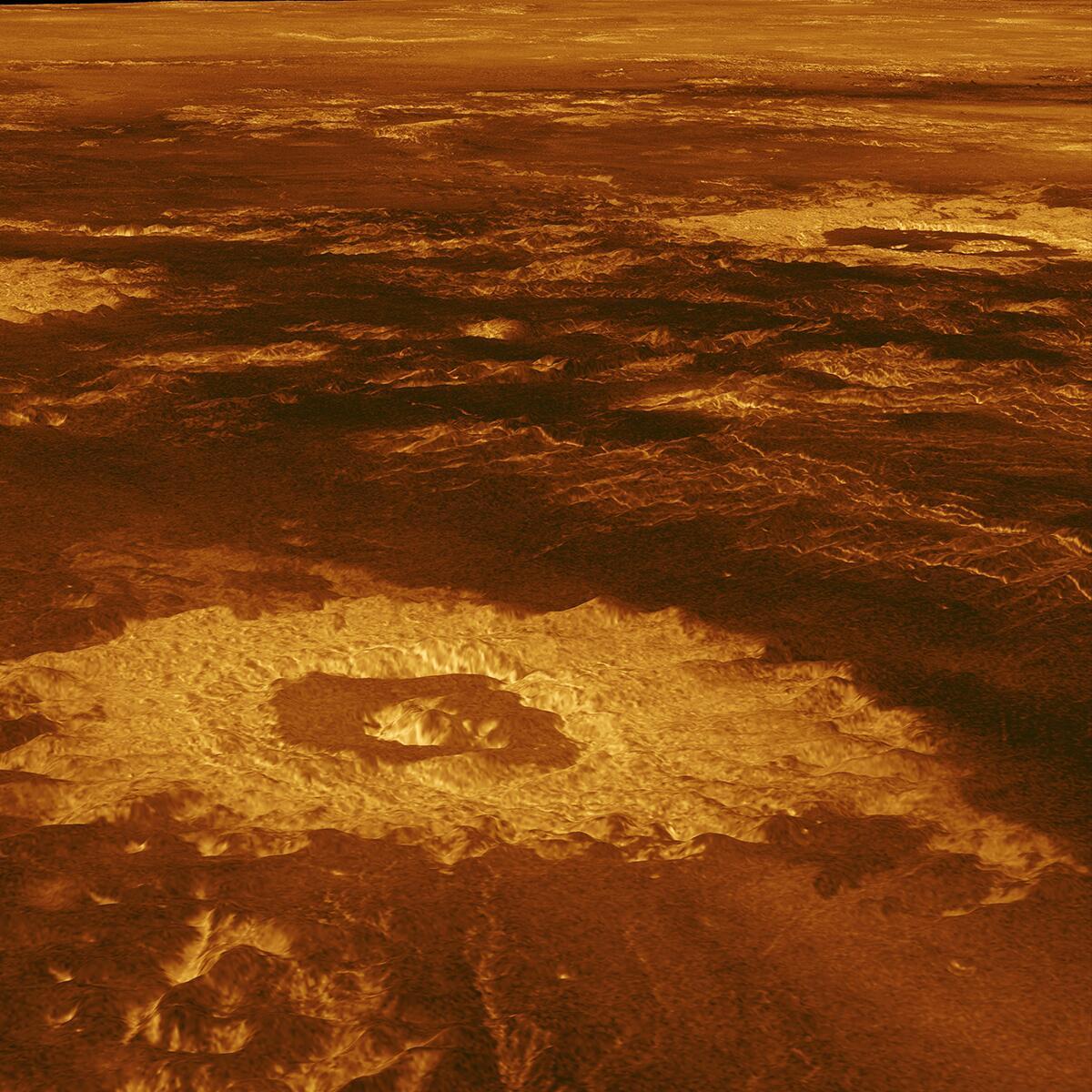Bild zu Venus
