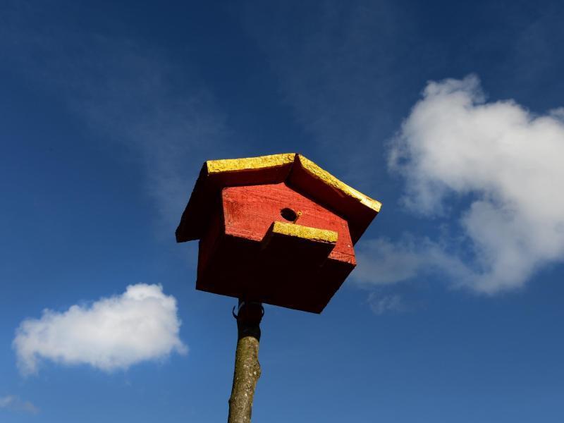 Bild zu Vogelhaus