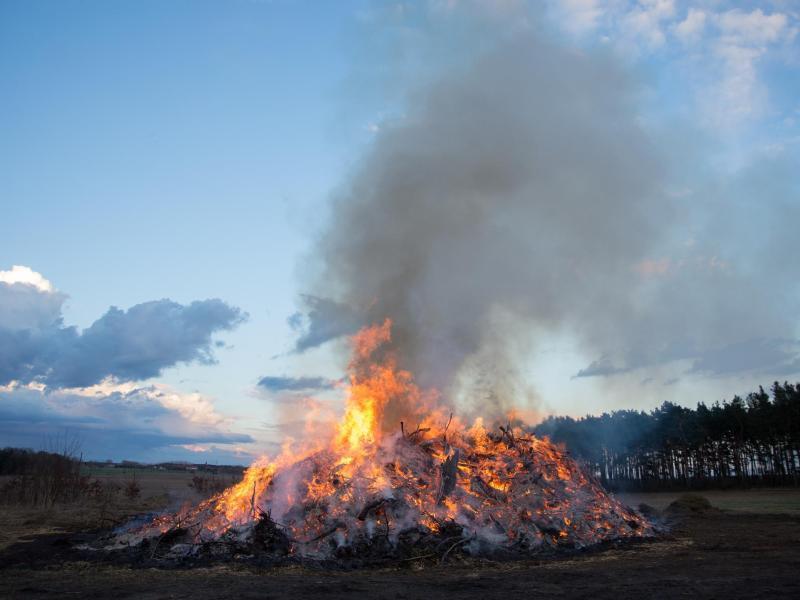 Bild zu Ein Osterfeuer kann für Tiere gefährlich sein