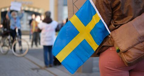 Schwedische Flagge, Demo, Leipzig