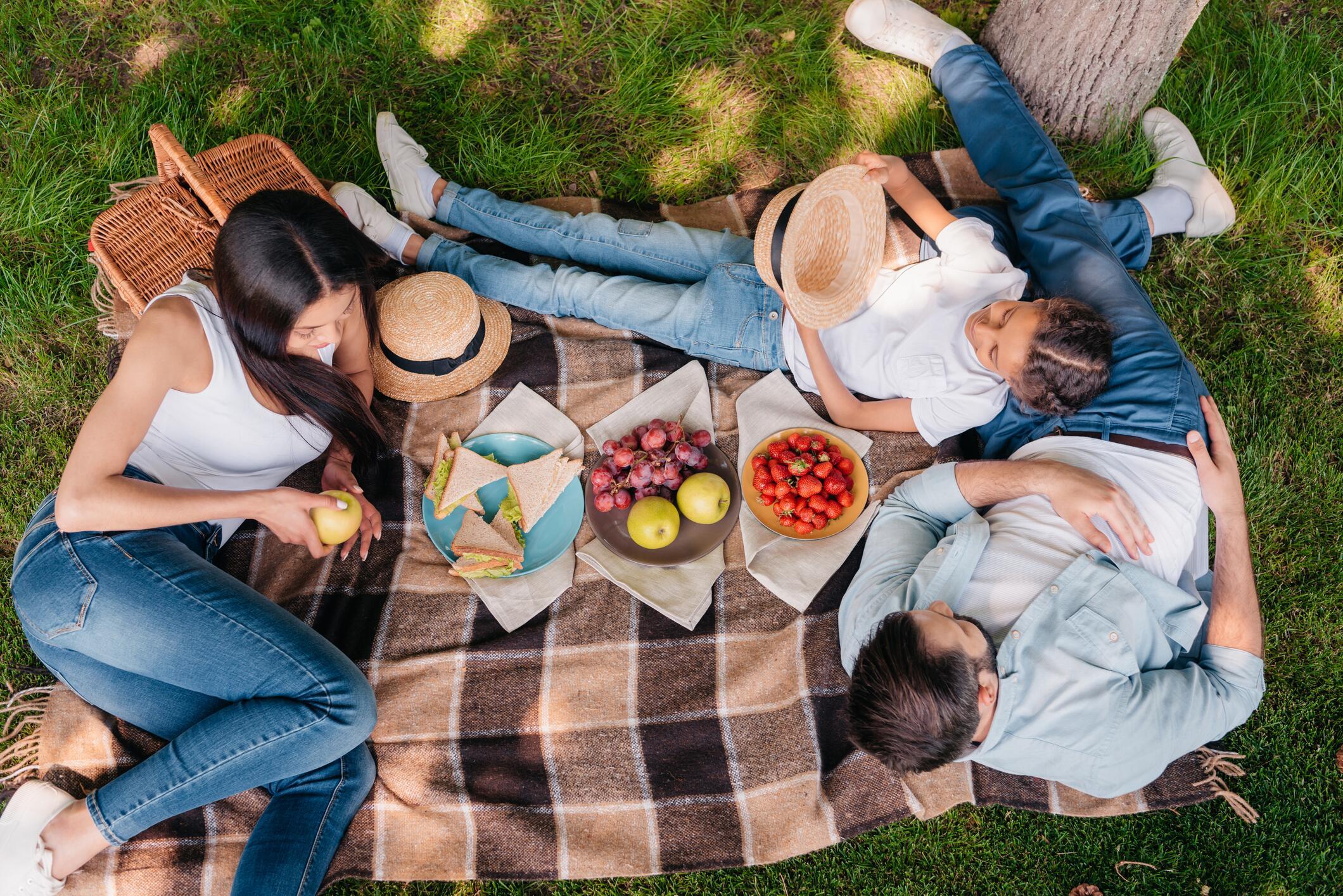 mit diesen produkten gelingt das perfekte picknick web de. Black Bedroom Furniture Sets. Home Design Ideas