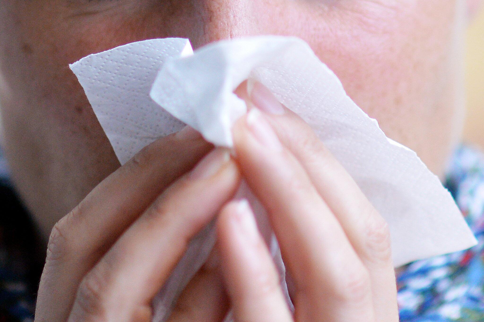 Bild zu Grippe