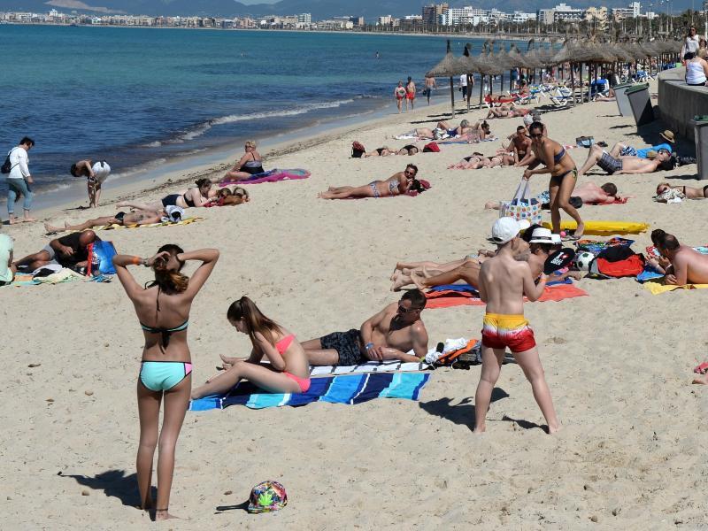 Bild zu Mallorca: Bei Touristen besonders beliebt