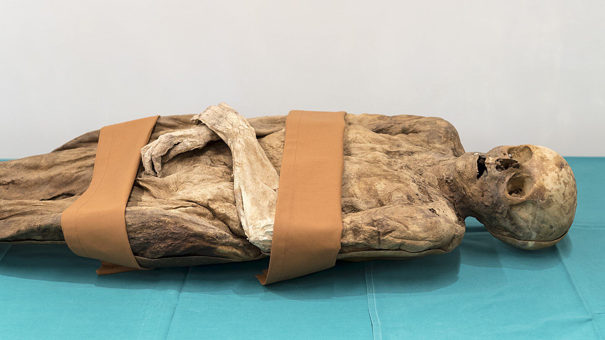 Bild zu Identifizierung der Barfüsser-Mumie