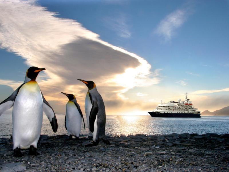 Bild zu Zehn neue Antarktis-Expeditionsfahrten mit der «Sea Spirit»