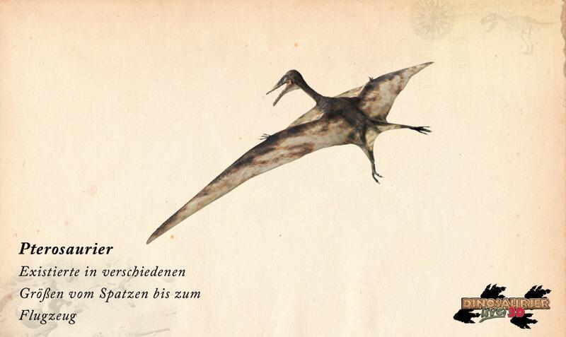 Bild zu Dinosaurier: Pterosaurier