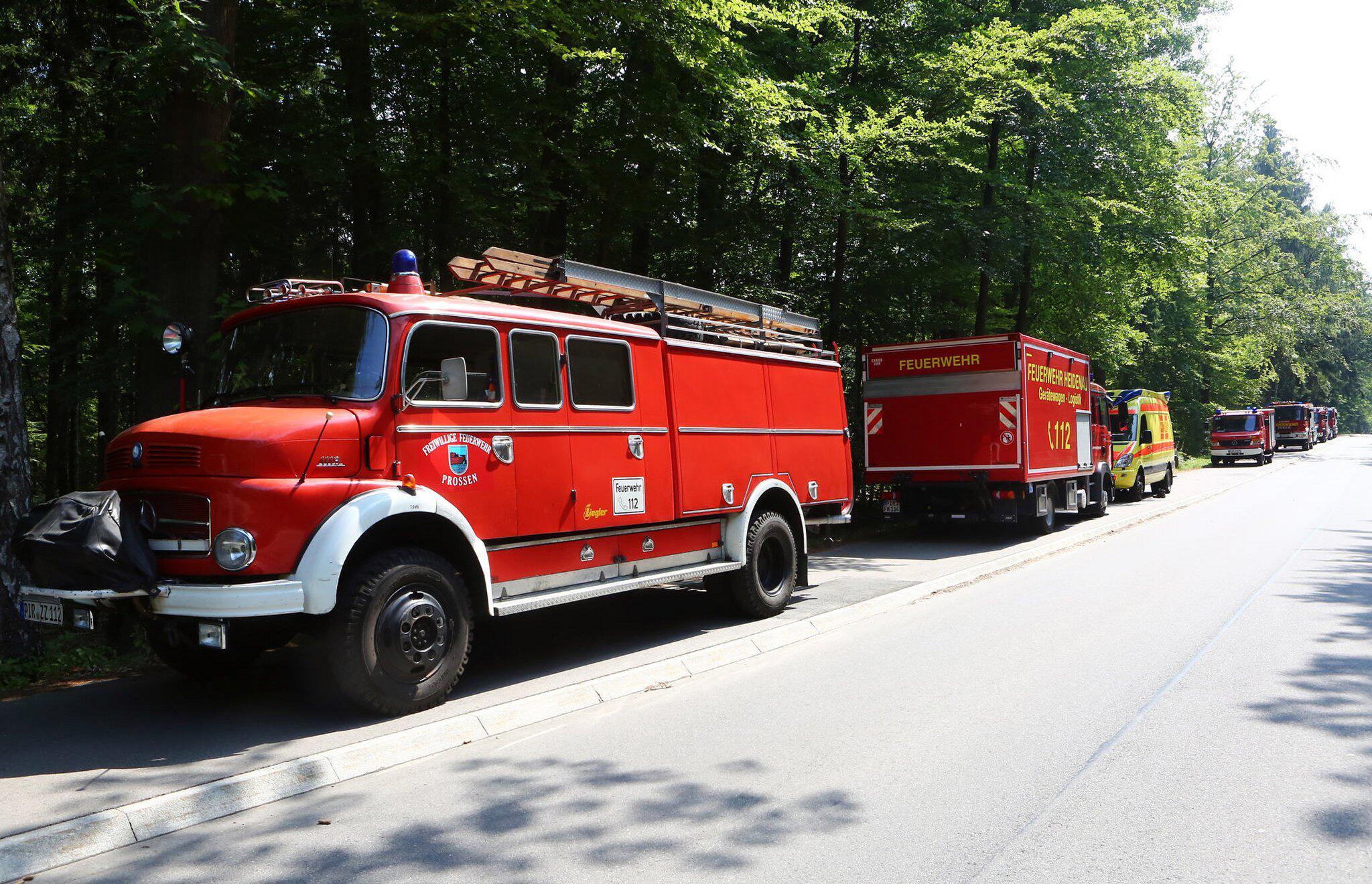 Bild zu Waldstück im Elbsandsteingebirge brennt